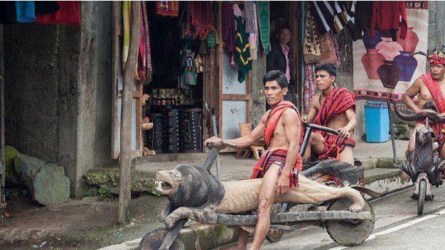 你以为有宝马很棒, 菲律宾土著出行工具才是厉害的