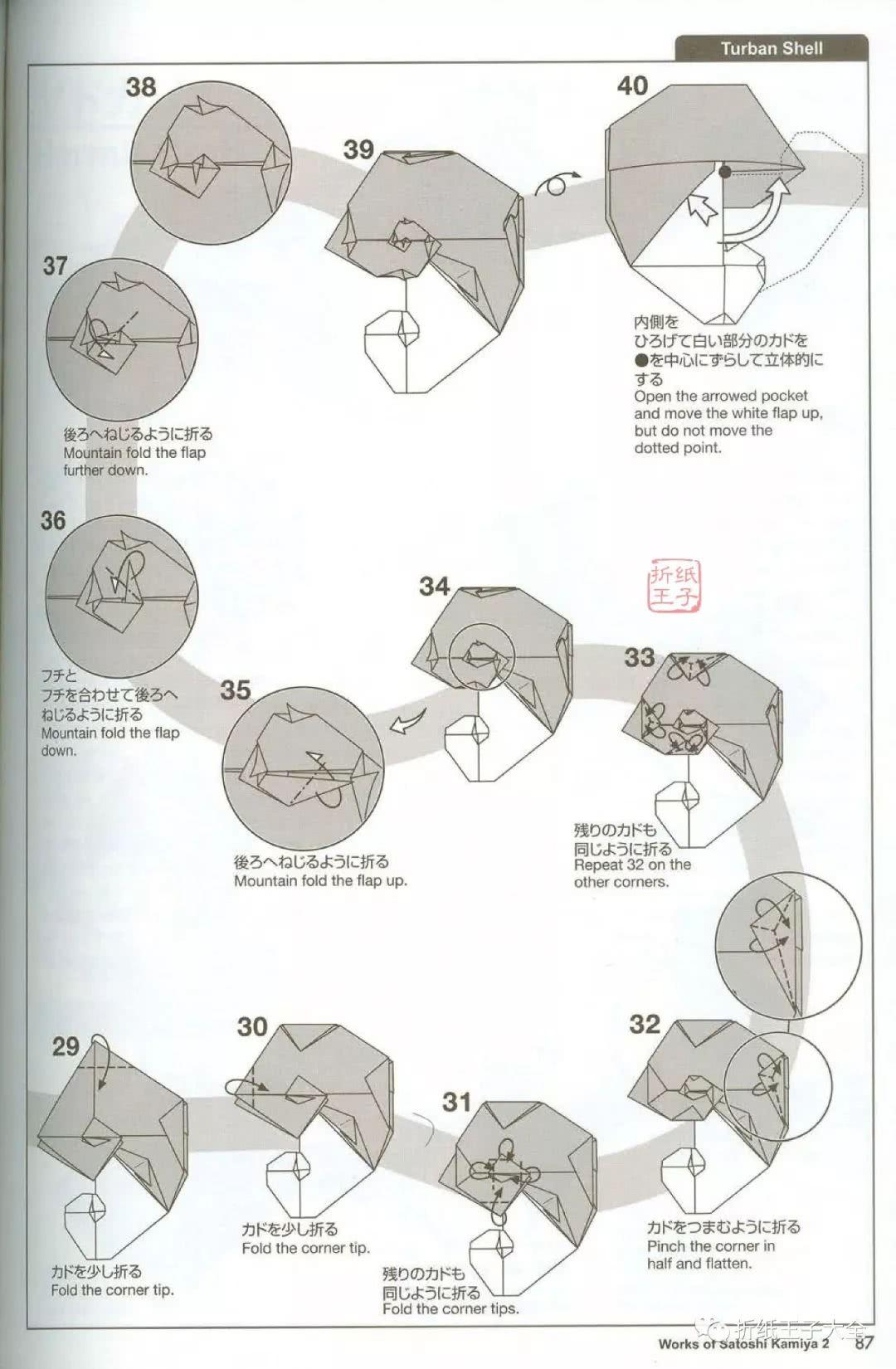 神谷哲史海螺折纸图解,turban shell