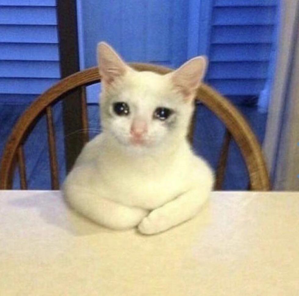流泪猫猫头_流泪猫猫头表情包剧情介绍图片
