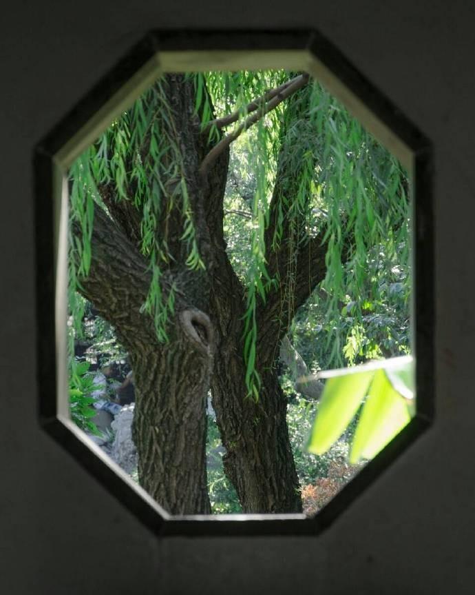 院里闲窗风与月,庭中四季雨和花私立v院里美国高中图片