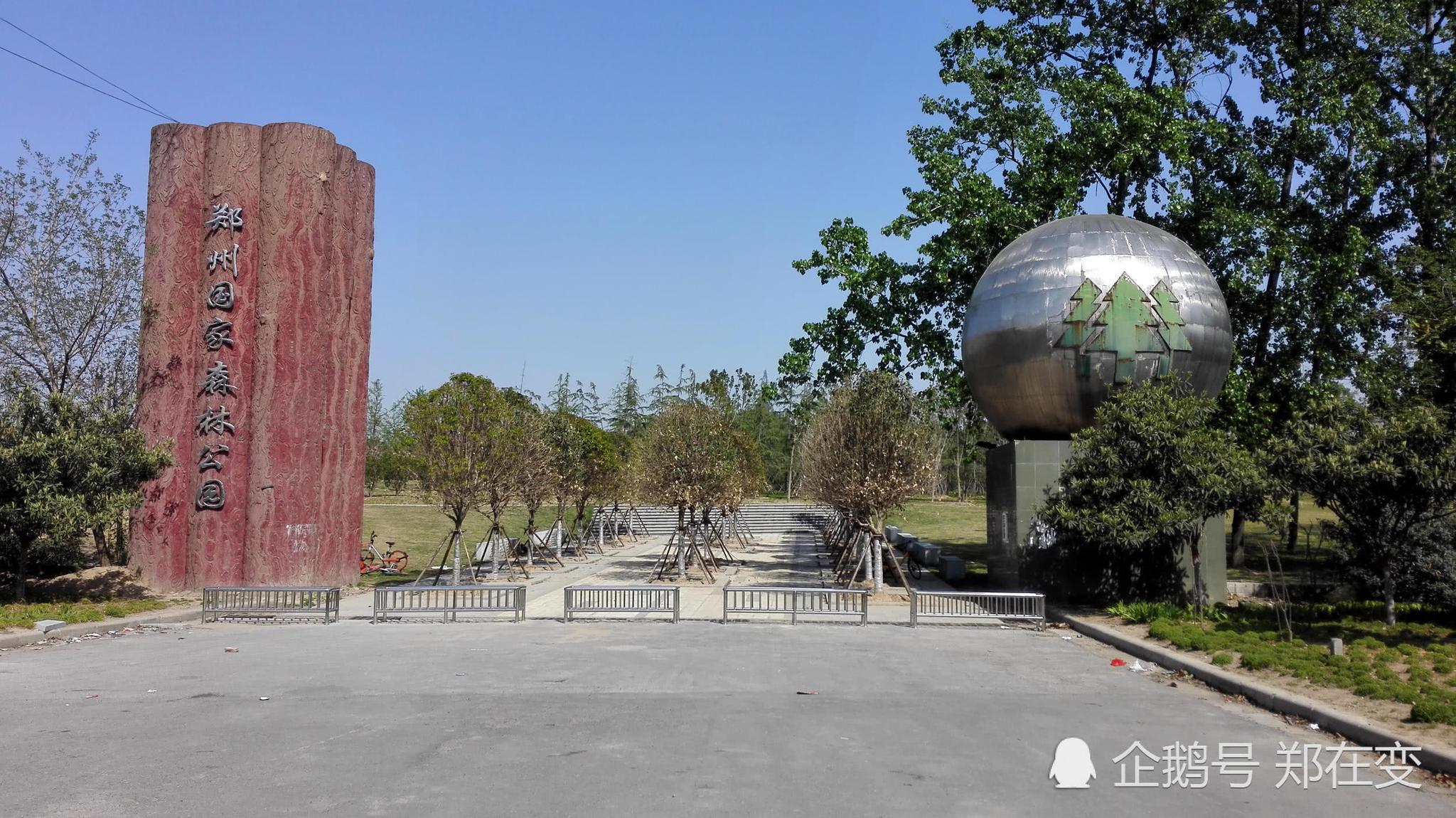 曾经的郑州国家森林公园,你知道现在变成什么样子了吗图片