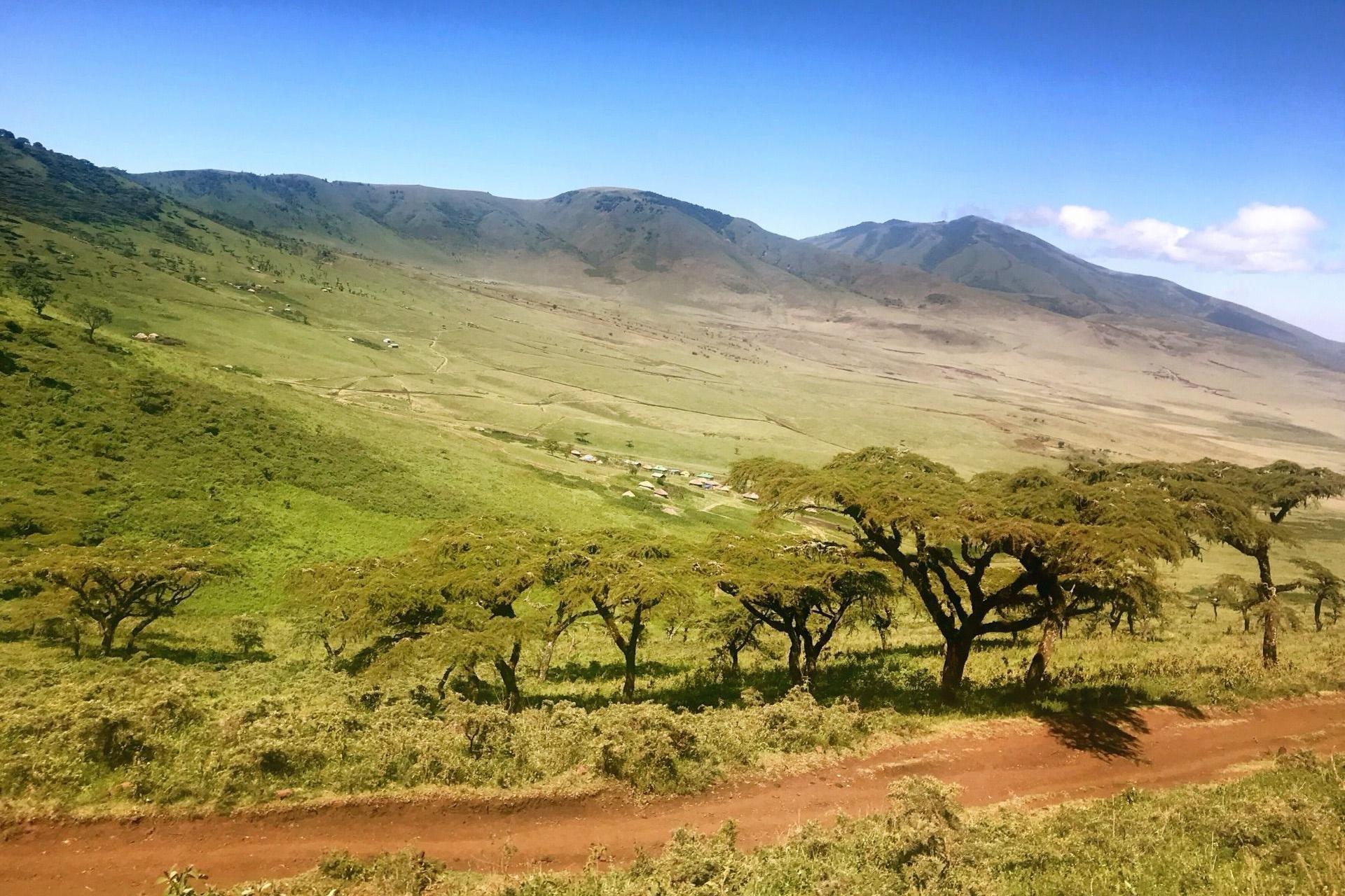 游览 肯尼亚 内罗毕 内罗毕国家公园