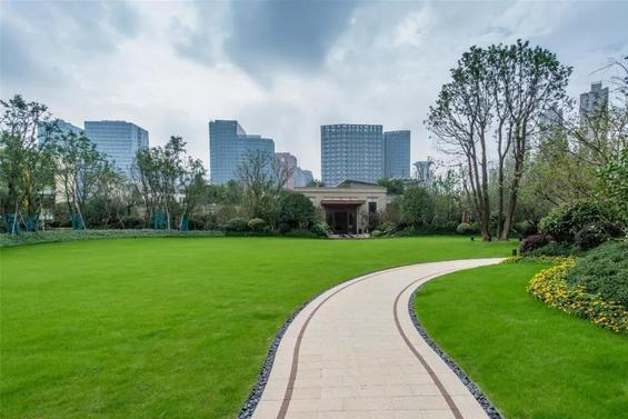 江浙沪第二大城市,城市建设不输上海,可惜地铁非常少