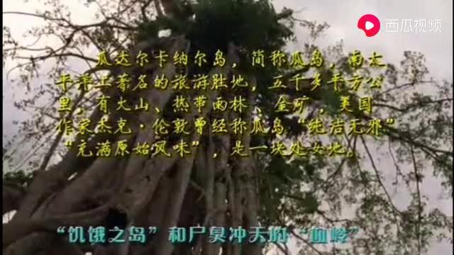 """瓜岛炼狱,日语中与""""饿""""同名的岛屿,饿死成千上万的日军 -纪实"""