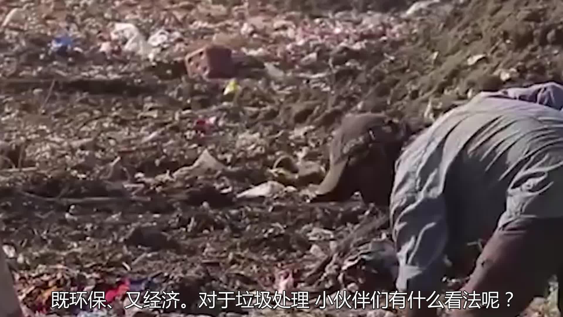 中国不再进口洋垃圾,美国垃圾堆积如山,把眼睛瞄向了泰国