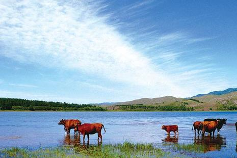 山西一处被忽略的景点,由大大小小15个湖泊组成,被称为高原明珠