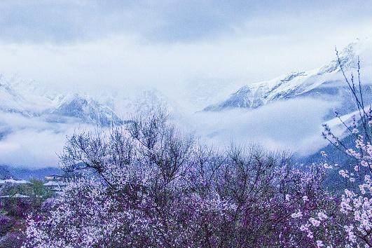"""它是""""西藏江南"""",既有世界上最深的峡谷,也有十里桃花"""