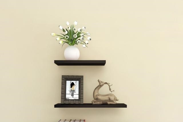 3个利用客厅墙面养花的小方法,好看又有生机!