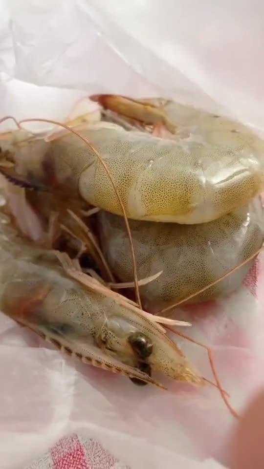 就算是再穷,也要吃海鲜,因为馋!703