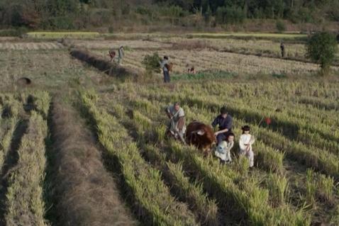 古代哪个朝代的农民生活最幸福?不是汉唐盛世,也不是宋朝