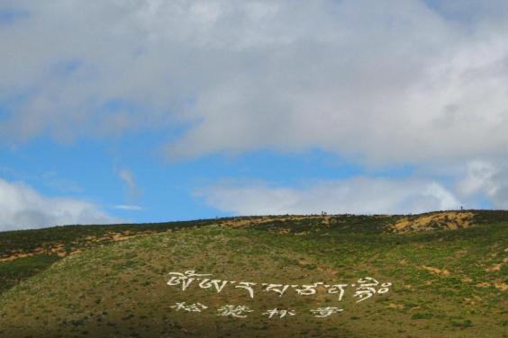 """松赞林寺:未到西藏,已在云南遇见另一座""""布达拉宫"""""""