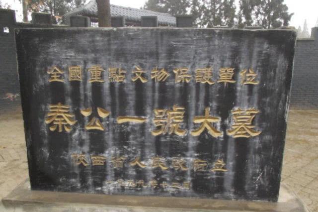 """陕西发现186人合葬墓,只有1个男人,专家:出土先秦""""电池""""文物"""
