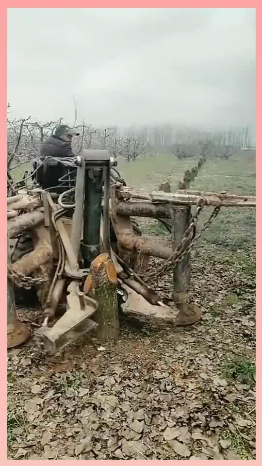 外国的拔树神器,3秒钟连根拔起,简直是光头强的最爱!