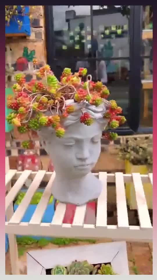 人才在民间,我还是第一次见这样的花盆,眼前这一幕,惊艳了