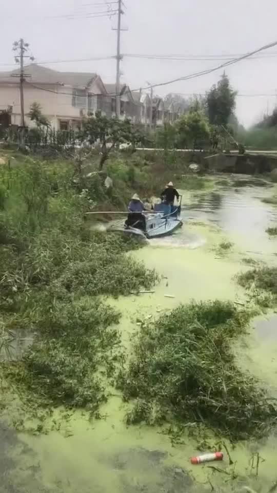 当你在河边,带着自己的女友漫步,想到这美好的环境是怎么...