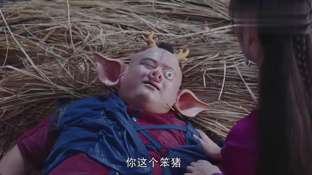 可爱的猪妖为救小狐妖,最终还是死在了她的眼前,心疼一波小猪猪