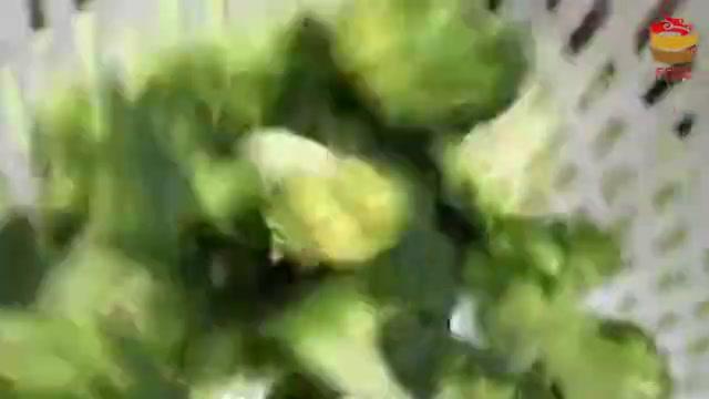 医生警告西蓝花和它不能同食,多数人不了解,赶快告诉家人!