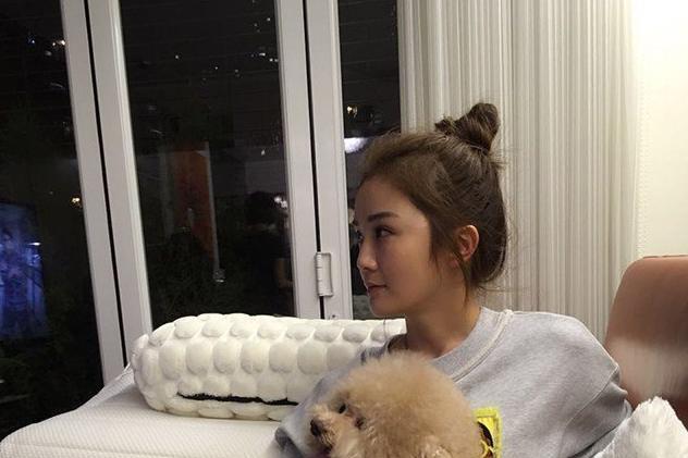 参观蔡卓妍住的豪宅,家里养的小狗也太多了,装修布置很豪华