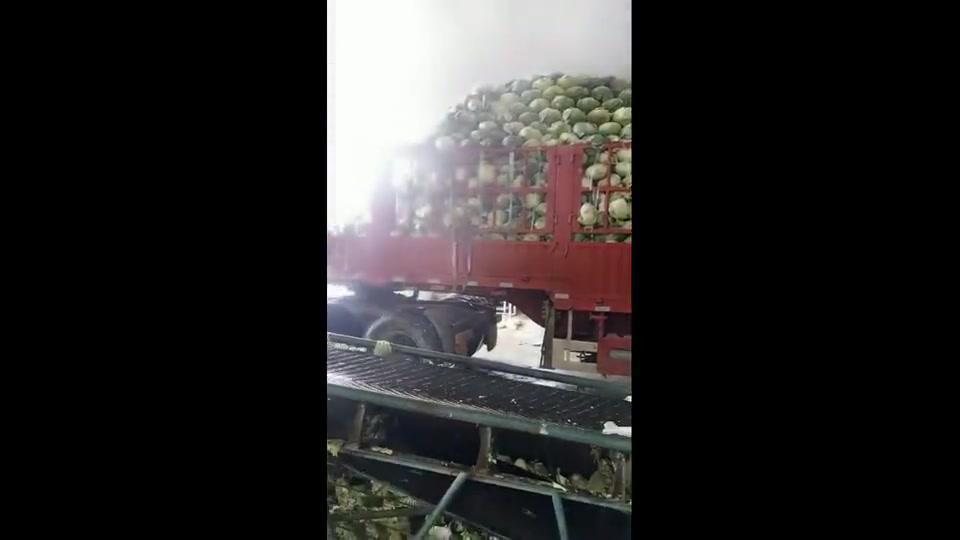 广西大批发市场的蔬菜,洗都不洗直接加工了,这样保质期久一点嘛