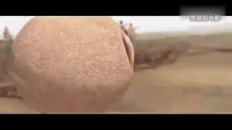 古代印度战争大片,这种作战方式见过吗?