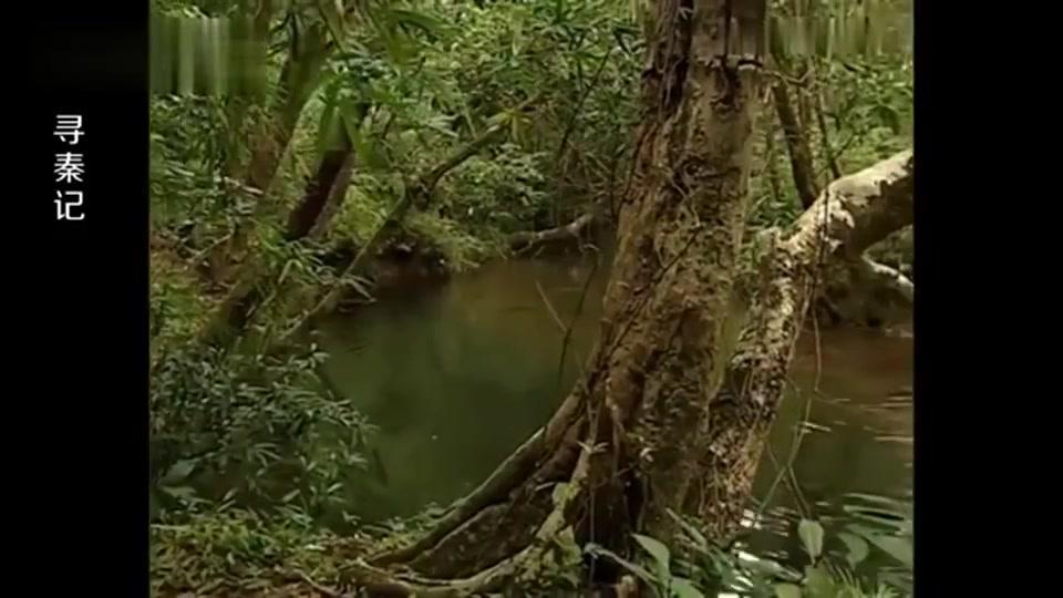 项少龙在古代潜水,谁料上岸遇到龙阳君,立马保护好自己