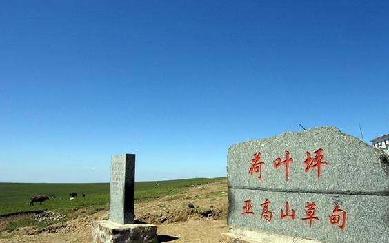 山西省忻州市五寨县荷叶坪草原,黄土高原上的绿洲