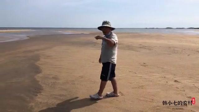 """赶海河流入海口,满沙滩都是""""偷跑""""的扇贝,寄居蟹成群的跑"""