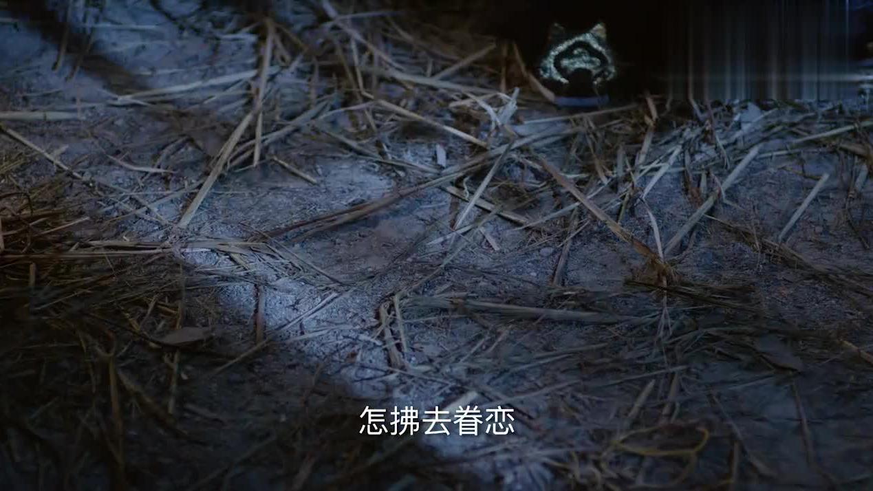 杨坚来到破庙,哪知竟发现了一面文字墙,点上蜡烛一看杨坚惊了!