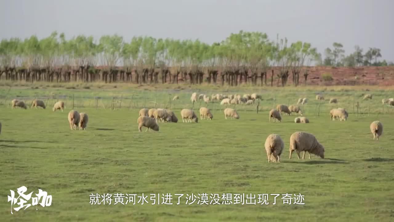 中国内蒙发生了什么?将黄河水引进沙漠,没想到出现了奇迹!