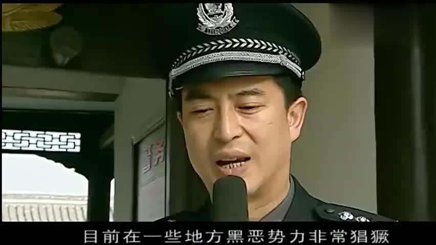 林荫被市人大任命为公安局长,势要打击黑恶势力,绝不手软