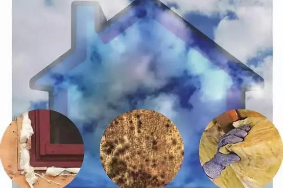 """专家忠告:新房选用了环保材料,还是要除甲醛!小心""""甲醛中毒"""""""