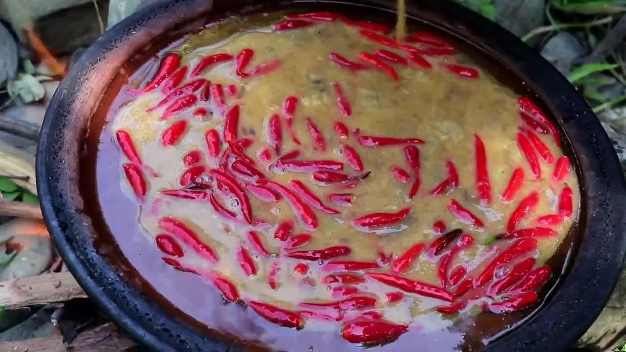 荒野大姐野外烹饪午餐,鸟蛋配红辣椒煎着吃,简单又美味!