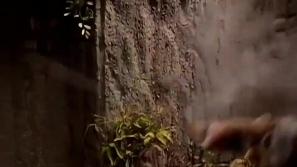 令狐冲开练独孤九剑,一夜时间练会破刀式,秒破风清扬的快刀!