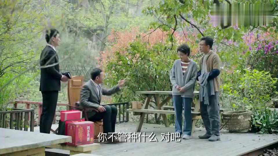 鸡毛飞上天:富商忽悠江河夫妇卖地皮买楼盘,不料楼盘就是他家的