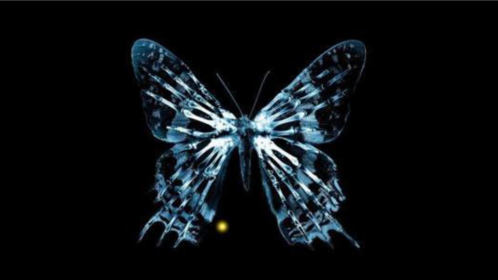 量子世界里的怪异现象,人类进行时间穿越,也不会引发蝴蝶效应