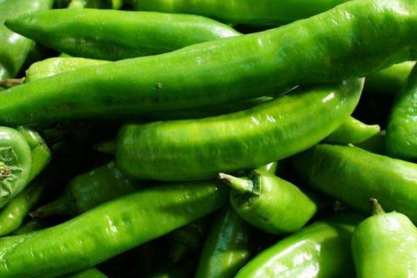 常吃青椒好处多多,降血压,补维C,富足消化,还能预防癌症!