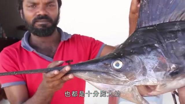 """印度大爷拿来100斤大旗鱼,用镰刀直接切成片,这刀工太""""秀""""了"""