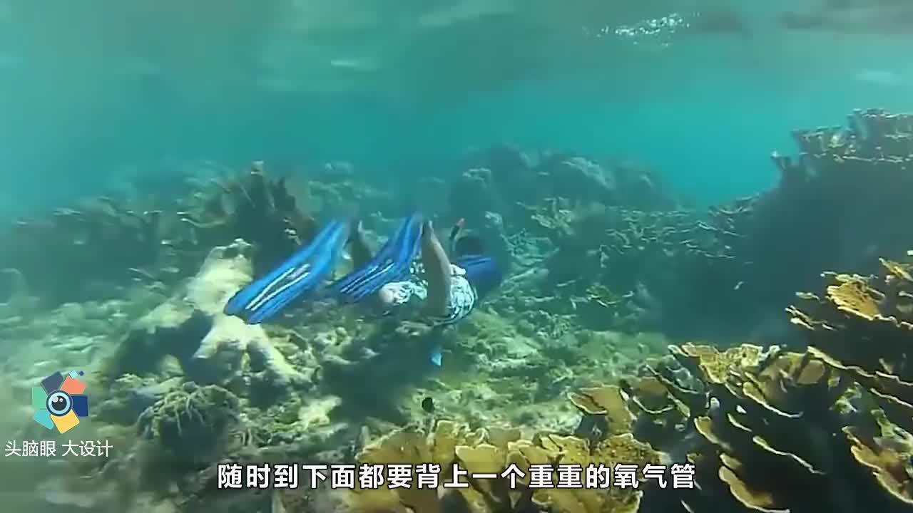 韩国发明人造鱼鳃人也能像鱼一样在水中自由呼吸不要氧气瓶