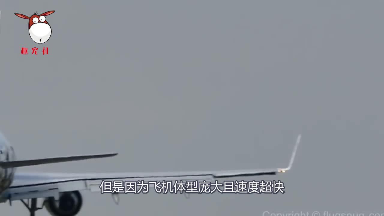 为什么飞行员害怕飞机撞鸟?一只小鸟的威力堪比一枚炮弹?