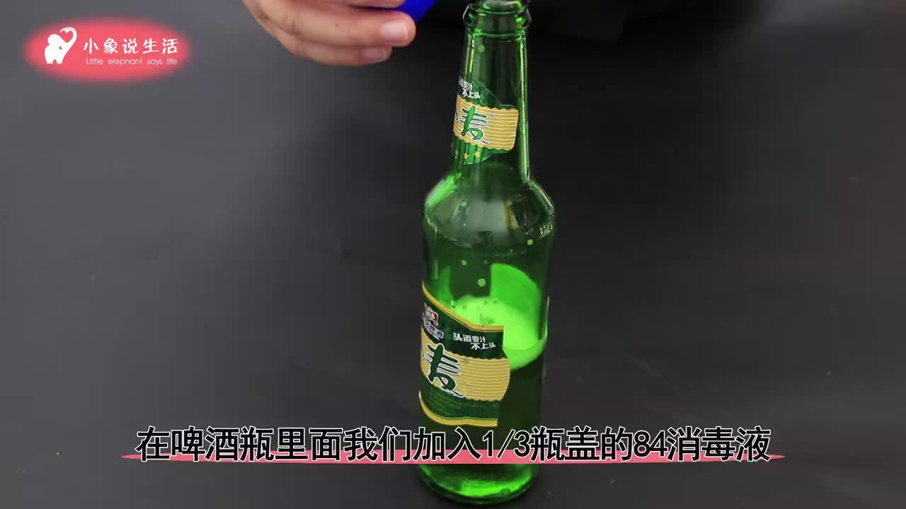 啤酒和84消毒液放在一起,真是厉害,轻松搞定卫生间下水道小飞虫