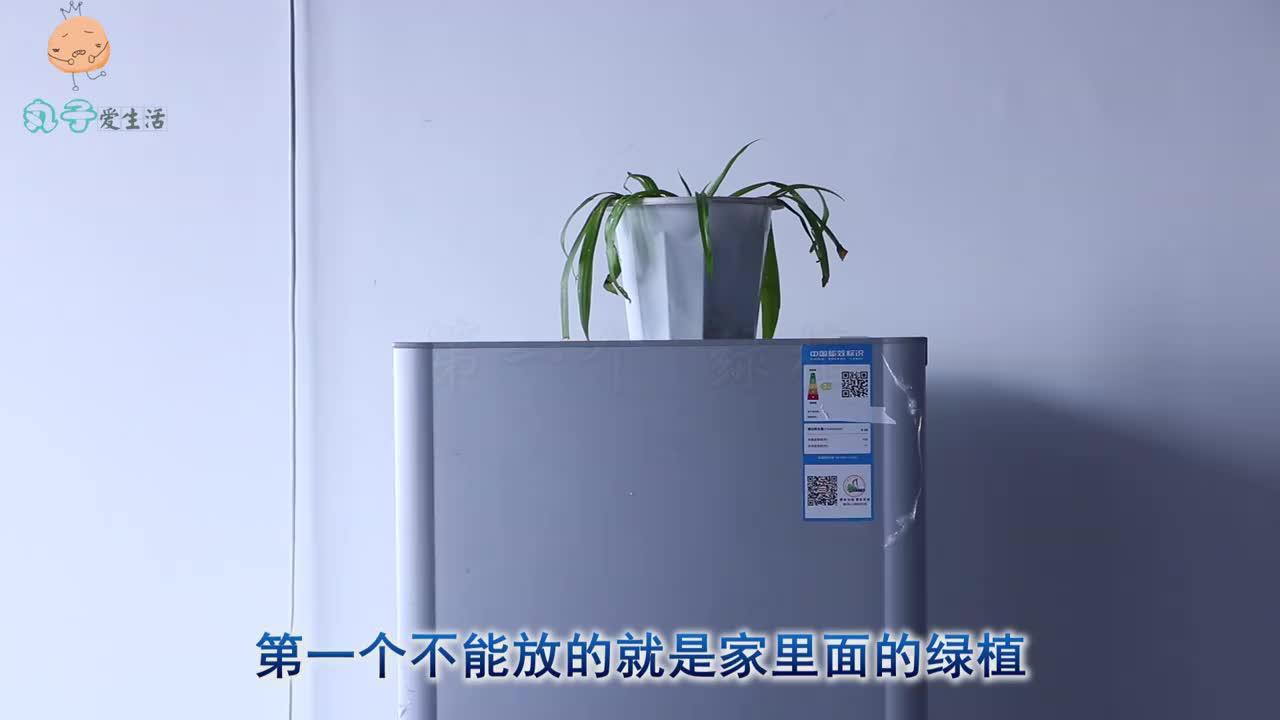 有三种物品,冰箱上一个都不能放!一般家庭不懂,冰箱耗电快