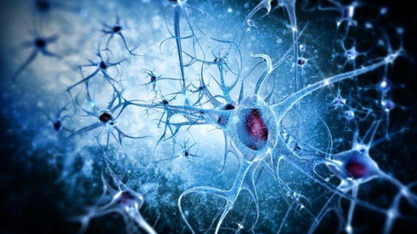 人类的智商有上限吗?若大脑被完全开发,人类能挑战神吗