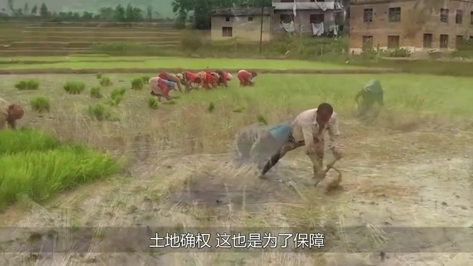 """农村迎来""""户籍改革"""",农民的户口将全部改动?事关家家户户!"""