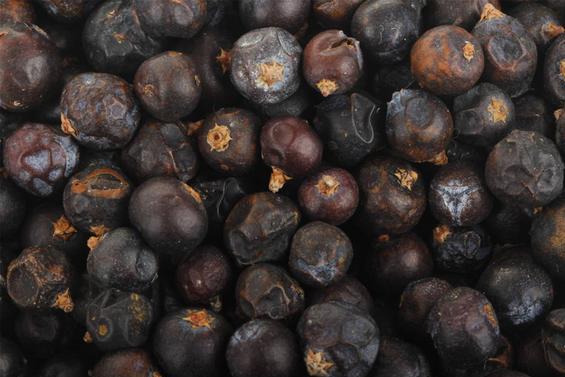 它新鲜时形似葡萄,干燥后神似荜澄茄,新式中餐香料将它常做秘方