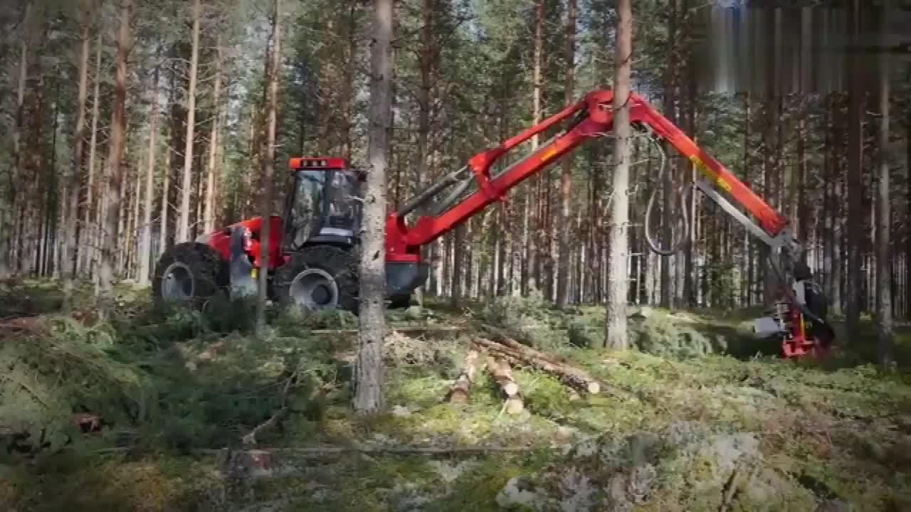 国外的新型木材砍伐机,砍伐处理一次完工,真是太牛了!