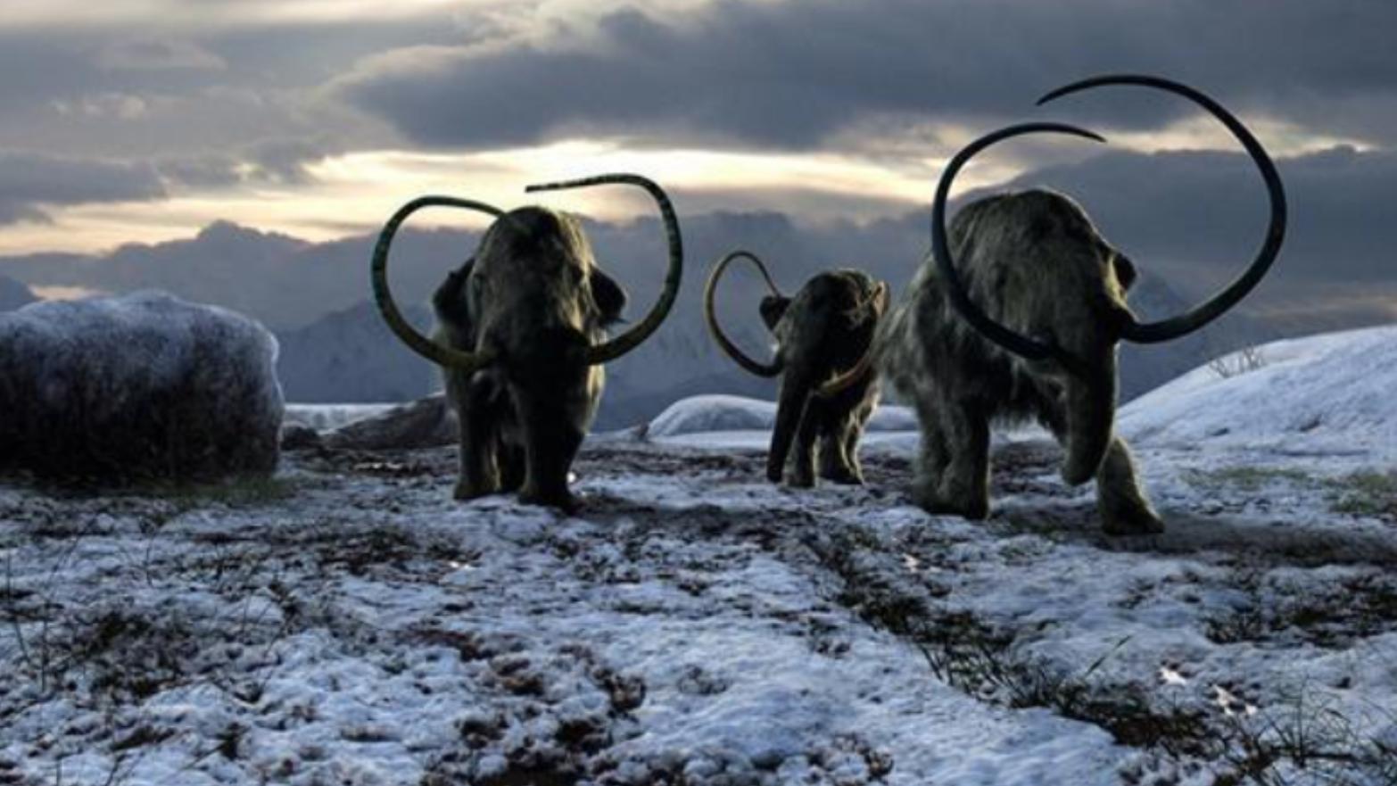 冰冻2.8万年的细胞复活,长毛象出现在南极,大复苏时代要来了