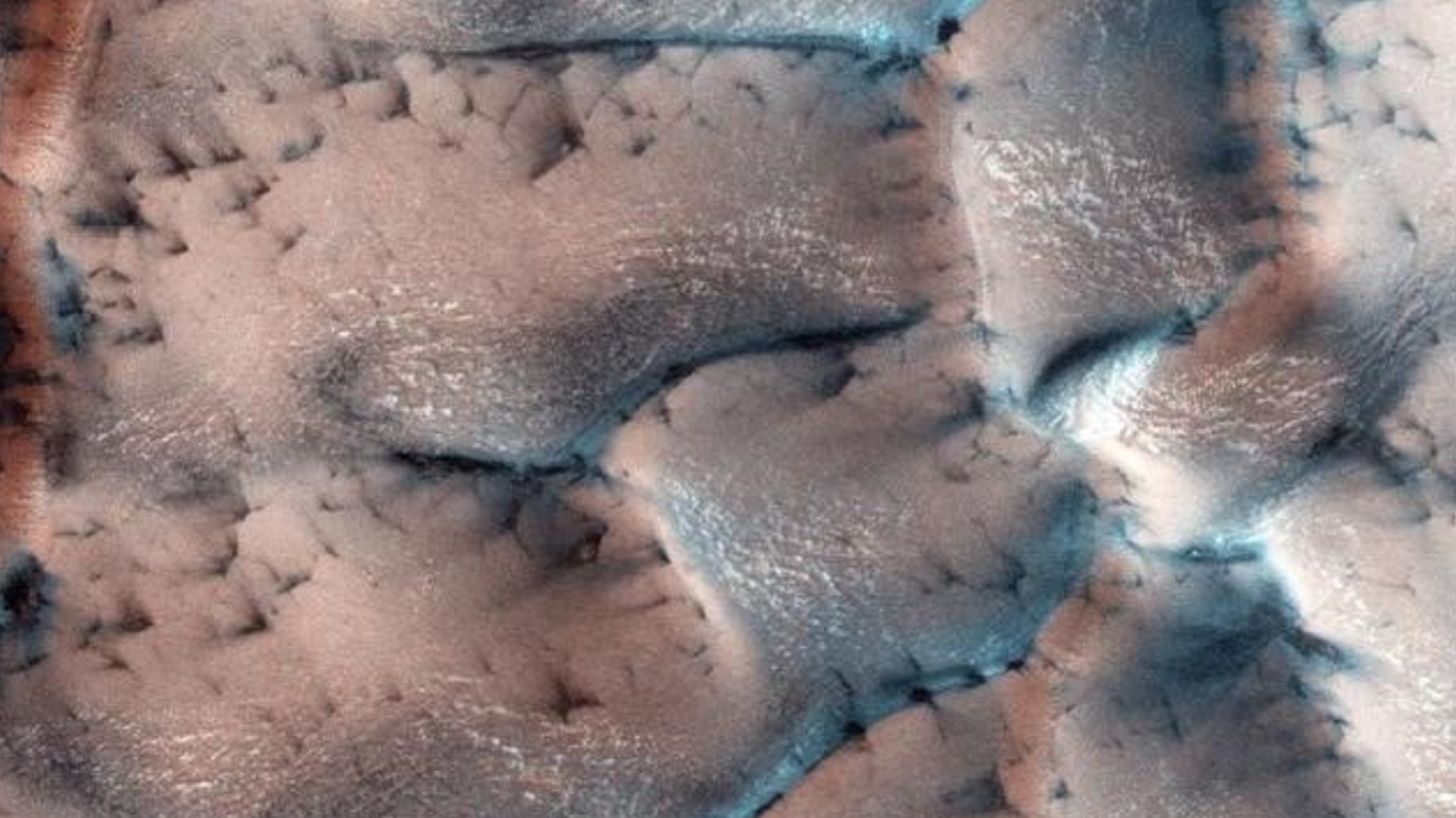 NASA隐瞒了40年,火星早已发现生命,土壤中发现微生物痕迹
