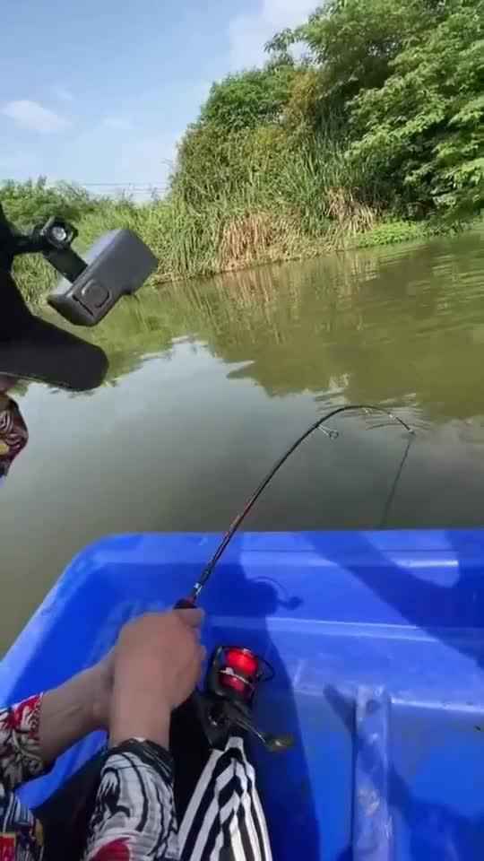 亚马逊河垂钓,刚钓到一只大鱼,提杆的时候傻眼了!