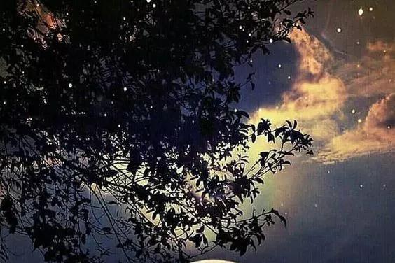 妻子12字点出春秋月亮之不同,苏轼大受启发,一首词字字良辰美景