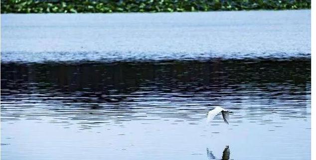 湖北景点:荆州古城,武汉东湖,长阳清江画廊,三峡大坝